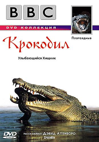 «Смотреть Документальные Фильмы Онлайн Про Крокодилов» — 2016